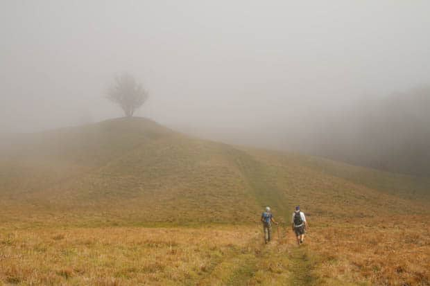 Two hikers walking through a field with a knoll and tree in the mist.