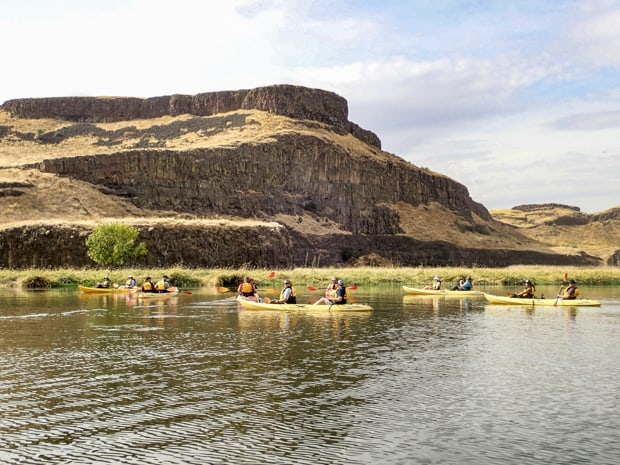 Guests from a small ship river cruise kayaking on the Palouse River near cliffs.