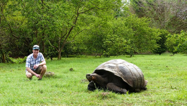 A male traveler kneels near a Galapagos giant tortoise