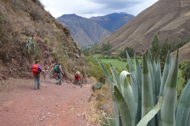 Machu Picchu hikers on a land tour walking towards a green valley floor with mountainous hillsides.