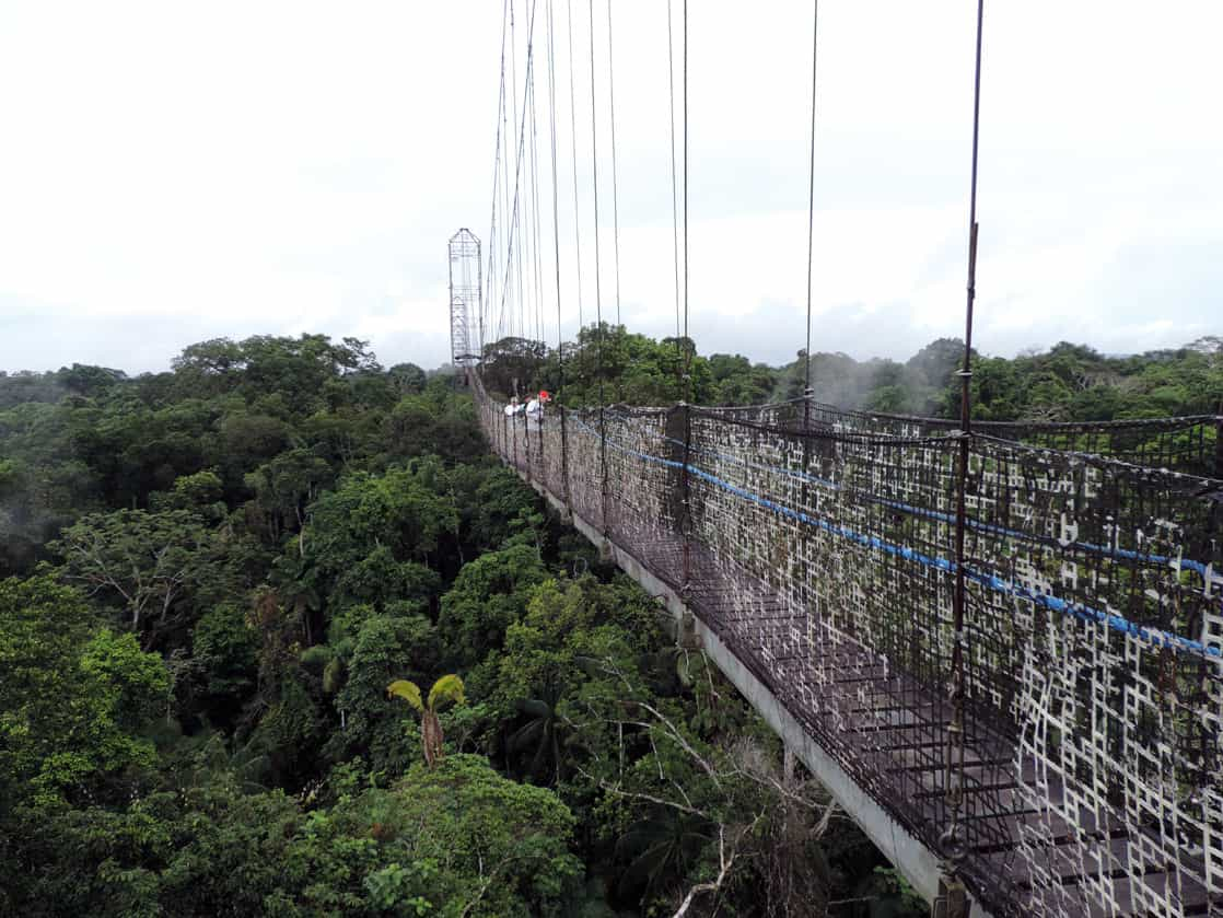 2 travelers on the suspended walking bridge atop the Amazon jungle canopy.