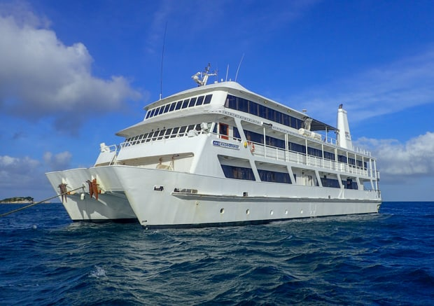 The Coral Expeditions II, bright white ship with three decks.