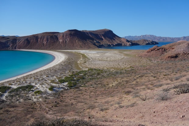 View of a Baja desert island with a narrow sandy beach sandwiched in between the ocean.