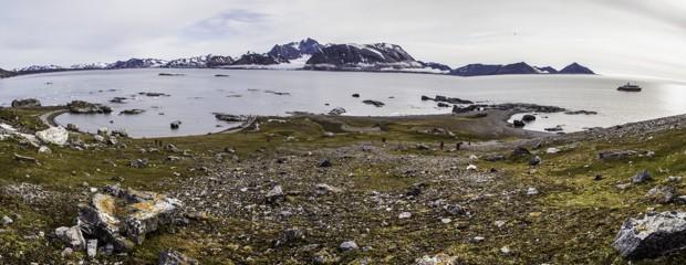Arctic Shoreline from a Traveler
