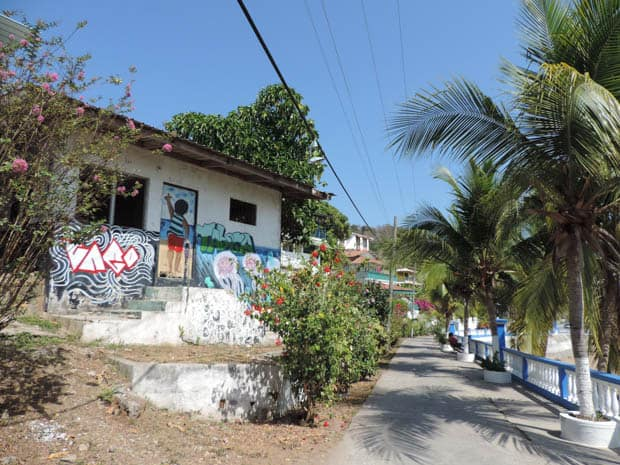 Path lined with palm trees and local houses on tour in Panama. ,