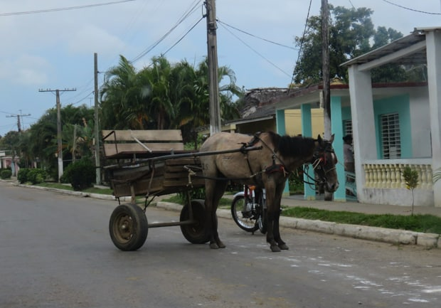 A house drawn cart in the countryside in Cuba.