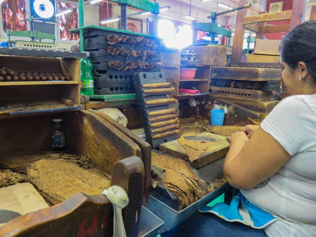 Lady rolling cigars in a small factory seen on a tour from a small ship in Havana Cuba.