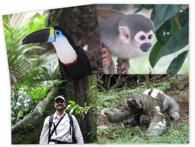 Toucan, monkey, sloth, and a happy guest on the Ecuador Amazon Adventure at Napo Wildlife Center.