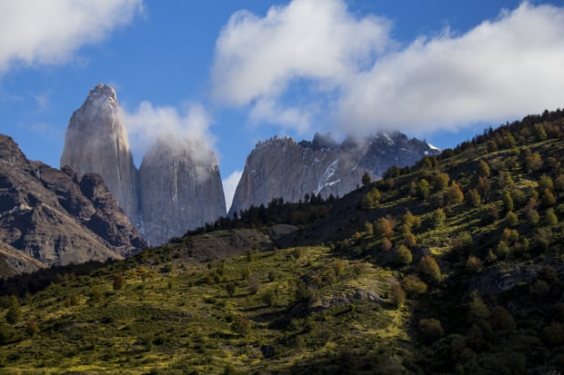 Grassy tree lined hillside with sheer mountain spires at Torres del Paine National Park.