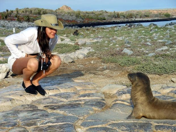 Curious traveler staring into a small sea lion on a rocky bluff in the Galapagos.