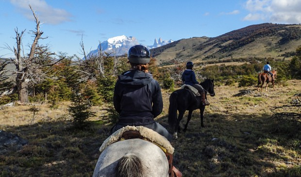 Travelers in Patagonia on horse back riding through the hillsides in Torres del Paine National Park.