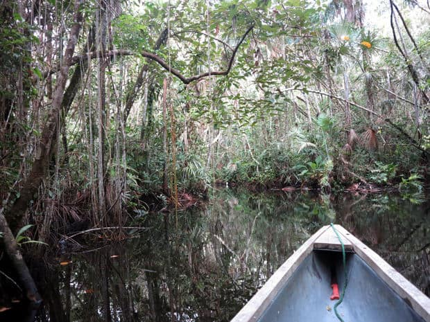 Tip of a canoe floating on a river in the Amazonian jungle.