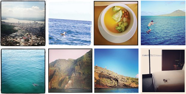 Collage of aerial city view of Guayaquil, sea bird floating on the ocean, vegetable soup, traveler jumping off a small ship into the ocean, sea turtle swimming, steep rocky mountain cliff jutting out from the ocean, island hillside, stateroom with bed and floor to ceiling windows.