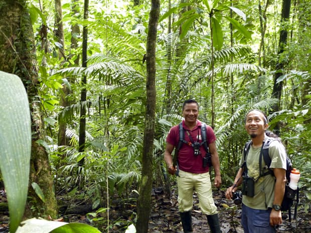 2 local guides interpreting on a hike in the Amazon jungle.