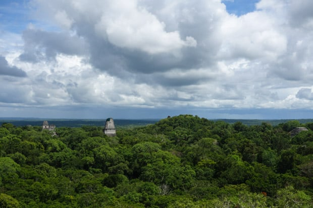 View from atop a rainforest canopy with 2 Mayan stone towers peering out above the canopy line in Tikal National Park.