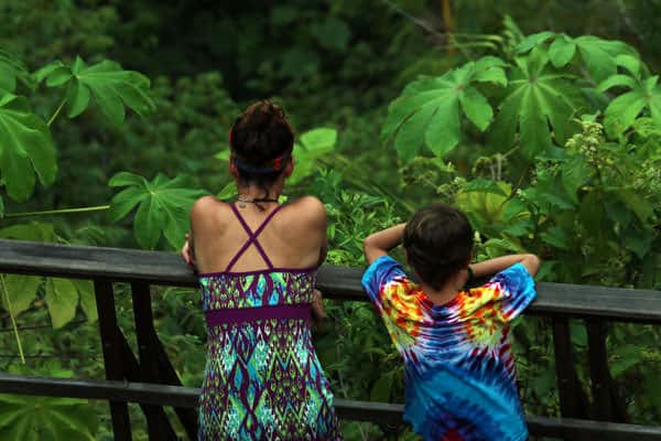Mother and son traveler looking out into the rainforest from the deck.