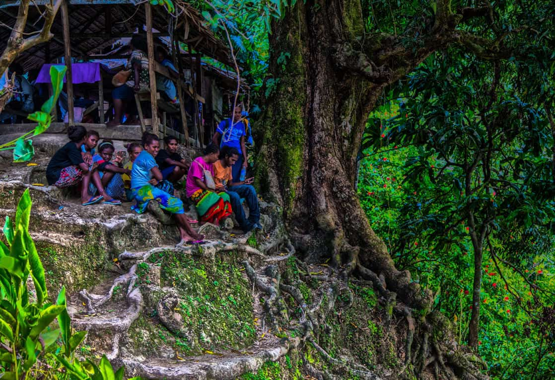 Local villagers hanging out by a tree with overgrown roots on an island in the south pacific seen on a tour from a small cruise ship.