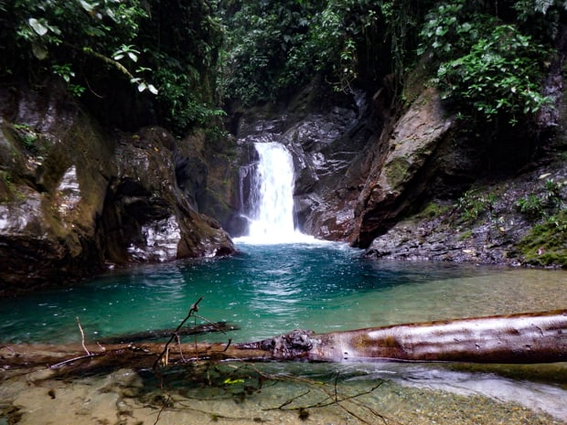 A waterfall and deep blue pool of water in the rainforest.