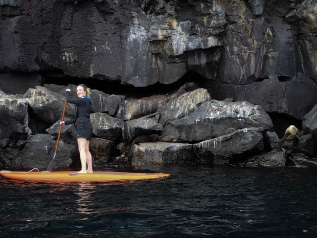 Galapagos traveler paddleboarding off a rocky shoreline with sea lions resting on the rocks.