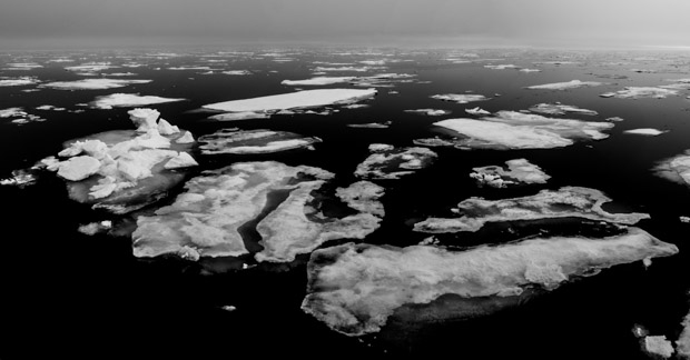 A vista of Arctic sea ice