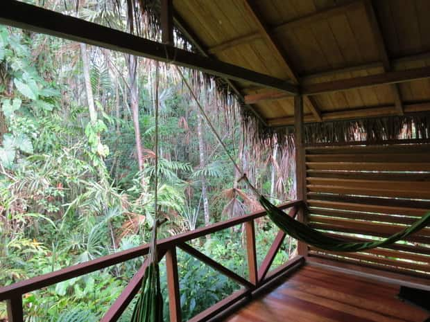 A deck with hammocks in the middle of a Amazon jungle.