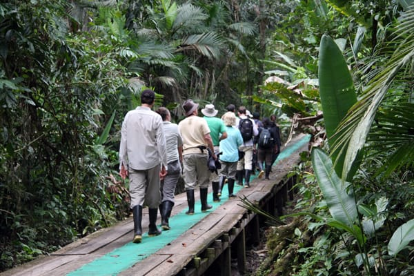 A group of people walking along a trail in the Ecuadorian Amazon jungle.