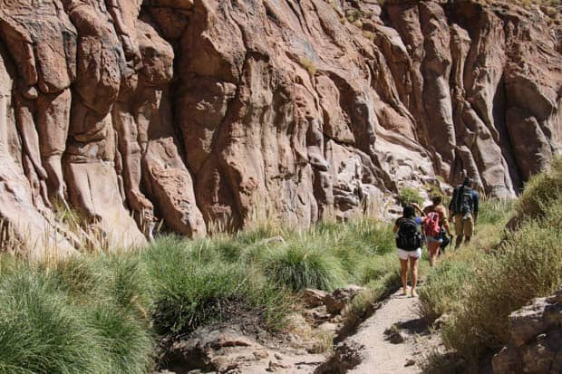 Group of Chile travelers hiking though a canyon with red rock and green grasses.