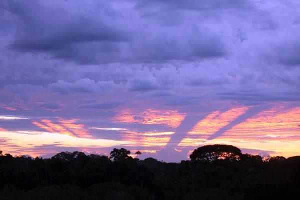 Purple-orange Ecuadorian Amazon sunset.