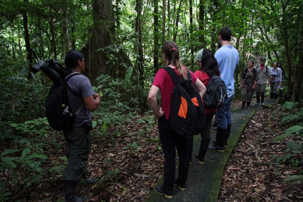 A guide leading a group of people on a trail through the Ecuadorian Amazon jungle.