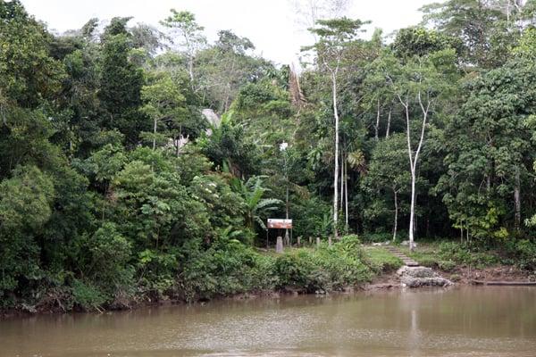 The docking area for a motorized canoe ride down the Ecuadorian Amazon River.
