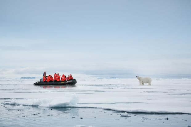 A group of people on a Zodiac take pictures of a polar bear