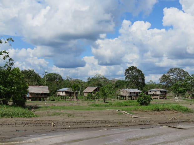 A row of stilt houses in the Peruvian Amazon jungle.