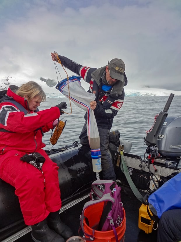 Guests participating in the citizen science program in a skiff from their small ship cruise to Antarctic.a