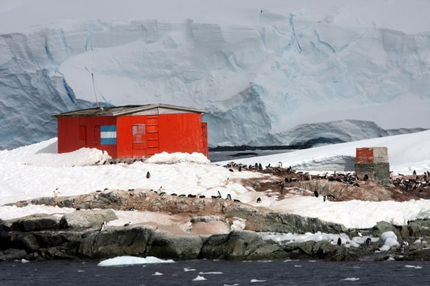 Penguin colony in front of a building and an iceberg in Antarctica
