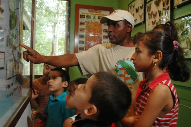 Children learning about native rainforest species with their local guide.