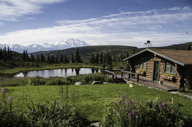 A cabin at a wilderness lodge in Denali National Park seen by a small pond with green grass.