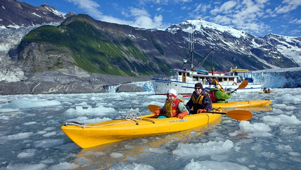 An Alaska small ship, the Discovery, floats in the background against a green mountain side, in front are guests paddling among ice waters in yellow kayaks, an excursion offered on Alaska cruises.