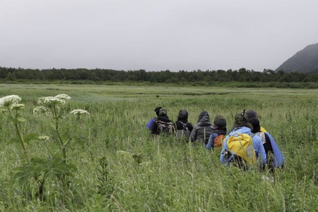 A group of Alaskan travelers hiking in a wetland while spotting a bear in the distance.