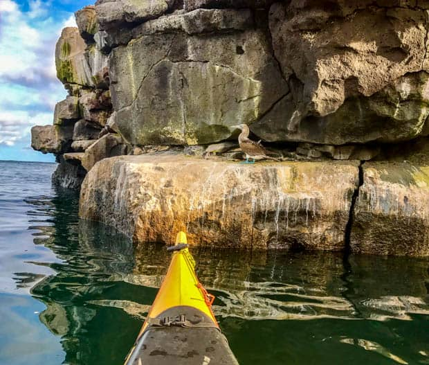 Tip of a yellow kayak floating in the Galapagos water in front of a tall rock formation