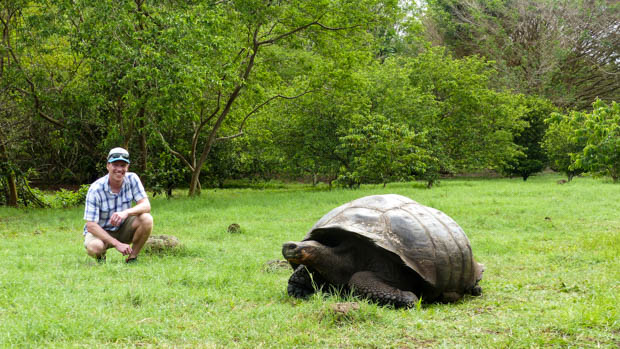 Galapagos traveler bending down in a grassy area with a land tortoise walking in front of him.