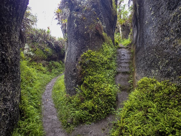 Volcanic rock formations with small green ferns lining the dirt floor with a walking trail.