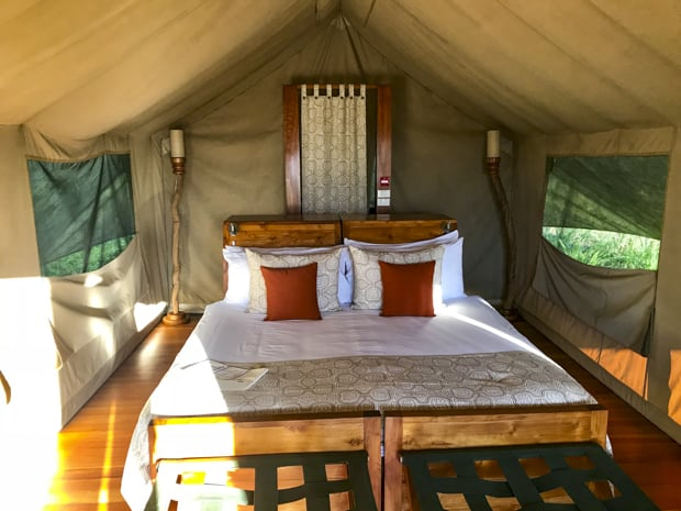 Galapagos land tour safari tent from the inside with a bed and open air netted windows.