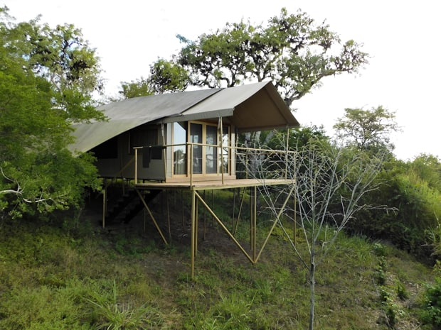 Safari style tent camp surronded by trees raised on top of a sloping hillside.