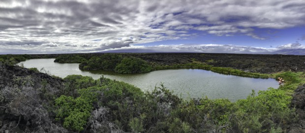 A lake in the Galapagos with a small group of pink flamingos on the western edge.