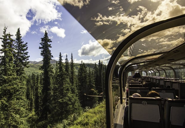 A forest view from a curved windowed Alaska Railroad train car on a trip to Denali.