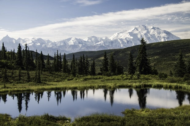 Mountain range reflecting in the pond in Denali National Park, Alaska.