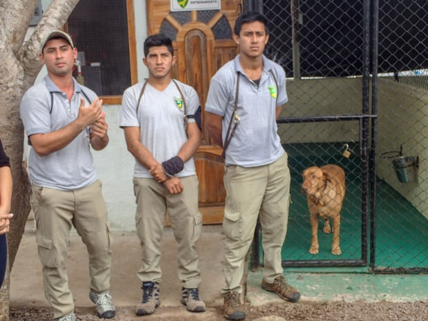 Local veterinarians standing in front of a dog in a kennel on the Galapagos.