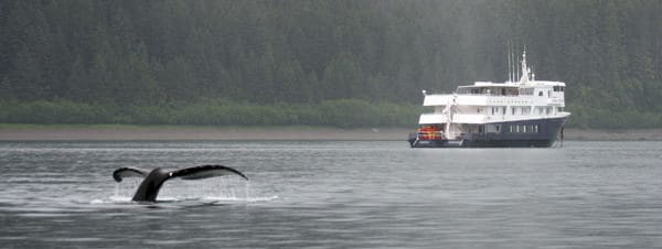 Whale tail in front of a small ship in Alaska.
