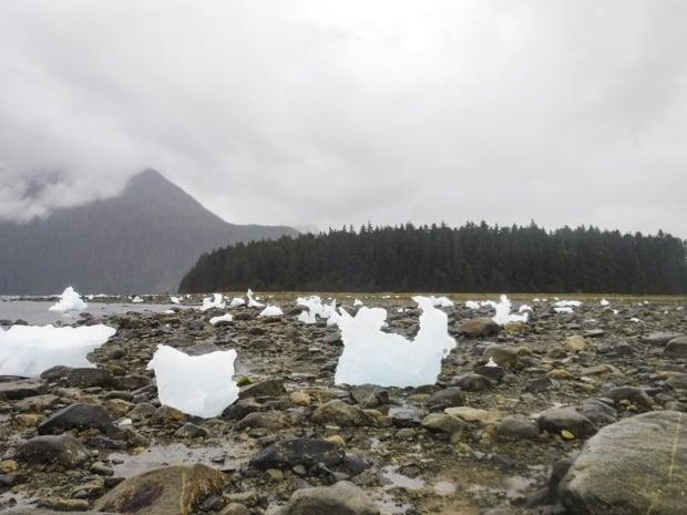 Ice on the rocky shore outside of Le Conte Glacier in Alaska.