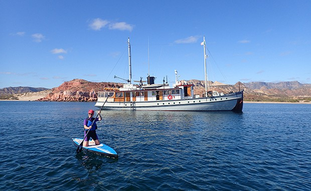 Guest stand up paddleboarding in front of small ship in Baja California.
